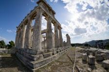Tempel-von-Aphaia-auf-Egina-4403