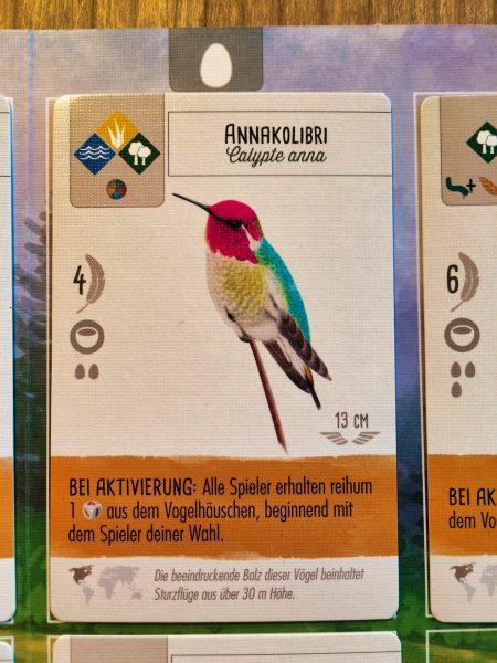 Vogelspiel