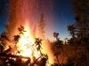 Fire + Evening Light