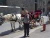 Kutschen in der Altstadt